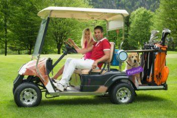 Dog Lounge Car