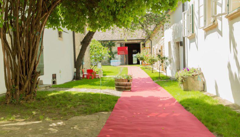 Garten_Tag_Hochzeit_Sonja_und_Markus