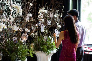 julian_amenth_wedding_events_proposal13